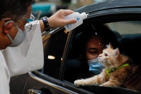 Animals blessed by priest in drive-thru ceremony