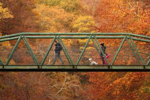 Spectacular fall colors around the world