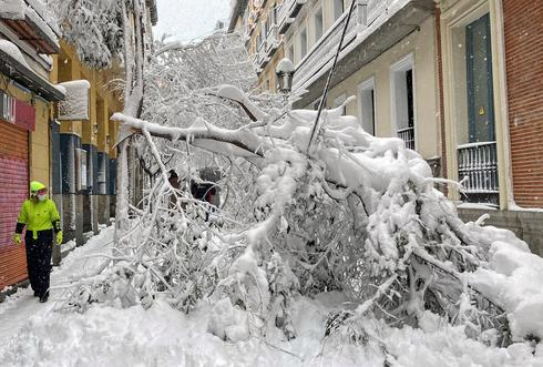 Heaviest snowfall in decades blankets Madrid