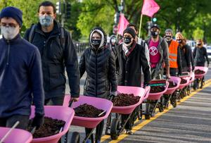 Extinction Rebellion dumps cow manure at White House on Earth Day
