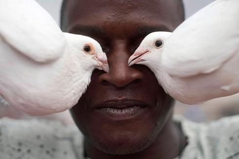 Cubans turn to pigeon breeding as an escape from pandemic