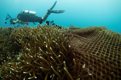 Ghost fishing nets threaten Thai coral