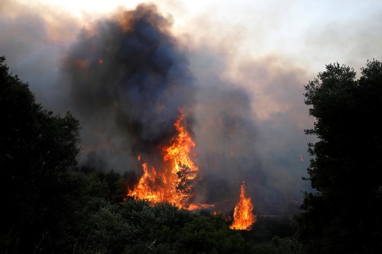 Atina'nın kuzeyindeki Varympompi banliyösünde orman yangınından duman yükseliyor, Yunanistan, 3 Ağustos 2021. REUTERS/Costas Baltas