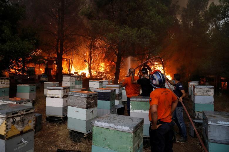 Gönüllü itfaiyeciler Atina'nın kuzeyindeki Varympompi banliyösünde arı kovanlarına yakın bir orman yangınını söndürmeye çalışıyor, 3 Ağustos 2021. REUTERS/Costas Baltas