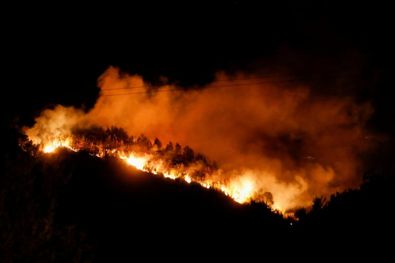 Flames rise as a wildfire burns near the village of Ziria, near Patras, Greece, July 31, 2021. REUTERS/Costas Baltas